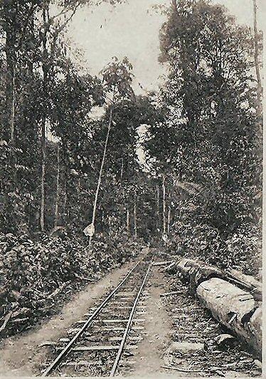 La voie ferrée de St Laurent à Carvein